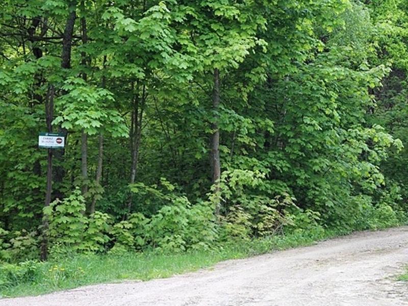 NIK o drogach leśnych