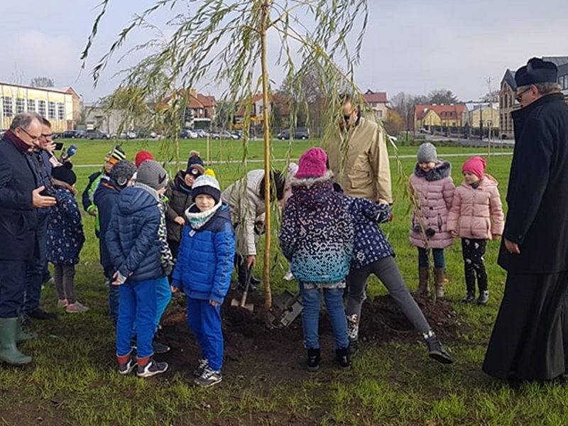 Posadzili ponad 100 drzew