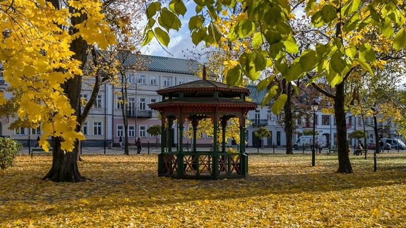 Jesień nie musi być smutna – rozmowa z psychologiem